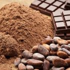 KPPU has completed the assessment of the acquisition of ADM Cocoa Business by Olam International Limited